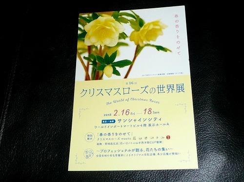 P1070075.jpg